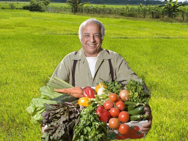 טבע הבשור ירקות אורגניים
