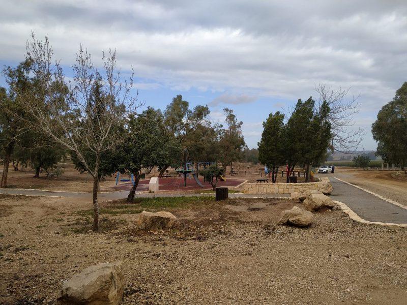 חניון איבים – יער ארז